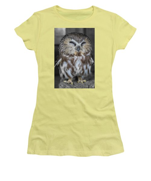 Saw Whet Owl Women's T-Shirt (Junior Cut)