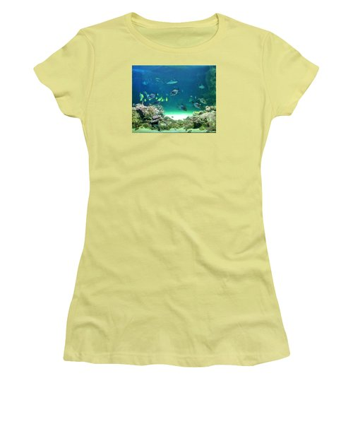 Sea Life Women's T-Shirt (Junior Cut) by Kay Gilley