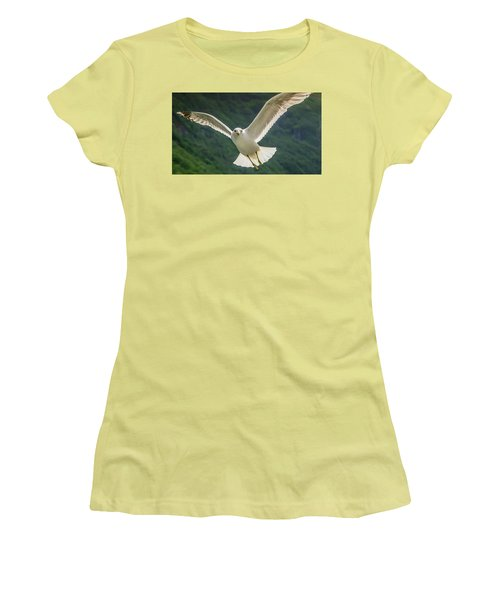 Seagull At The Fjord Women's T-Shirt (Athletic Fit)
