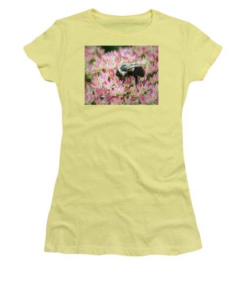 Women's T-Shirt (Junior Cut) featuring the photograph Sedum Bumbler by Bill Pevlor