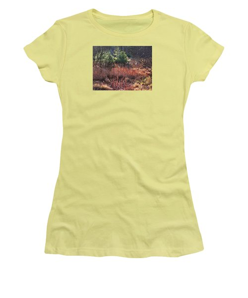 Shimmering Sunlight On The Cattails Women's T-Shirt (Junior Cut) by Joy Nichols