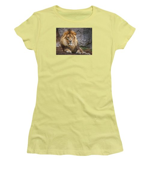Women's T-Shirt (Junior Cut) featuring the photograph Shombay by Elaine Malott