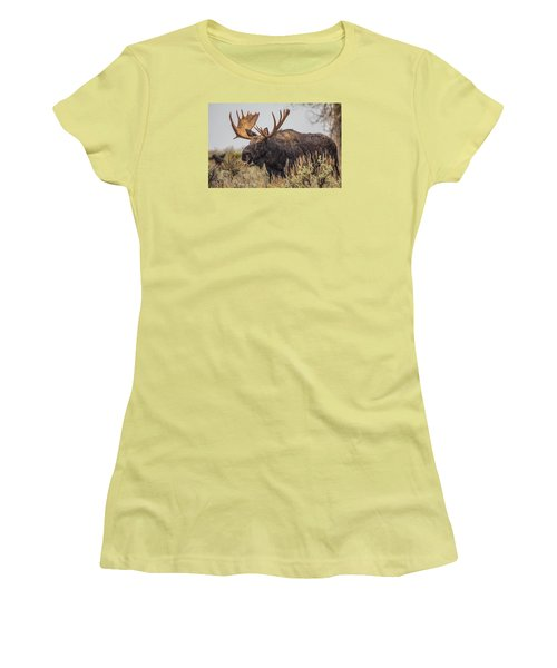 Women's T-Shirt (Junior Cut) featuring the photograph Silly Moose  by Kelly Marquardt