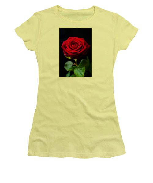 Single Rose Women's T-Shirt (Junior Cut) by Miguel Winterpacht