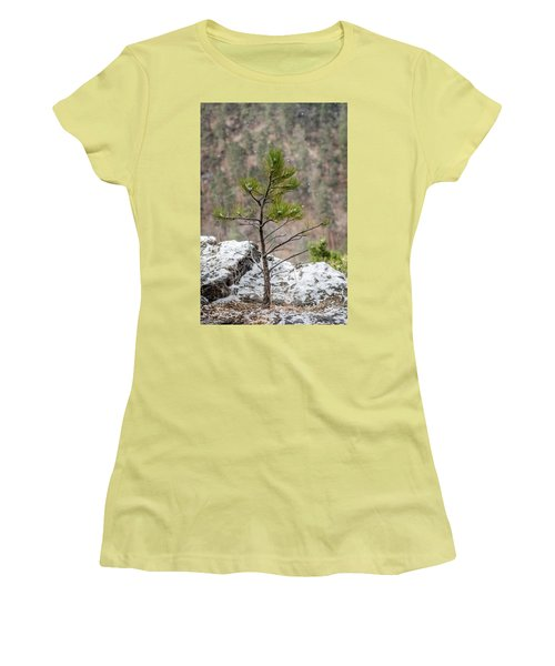 Single Snowy Pine Women's T-Shirt (Athletic Fit)