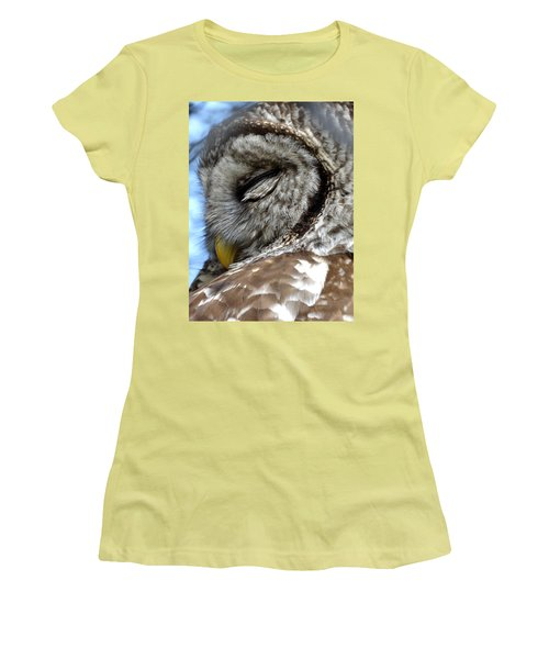 Sleeping Barred Owl Women's T-Shirt (Junior Cut) by Rebecca Overton
