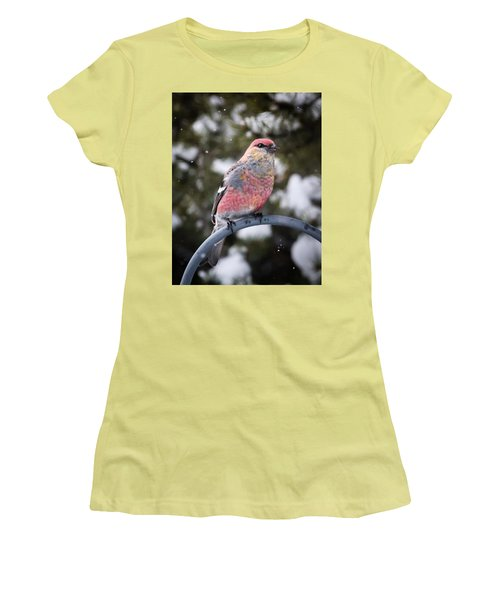 Snow Bird Women's T-Shirt (Athletic Fit)