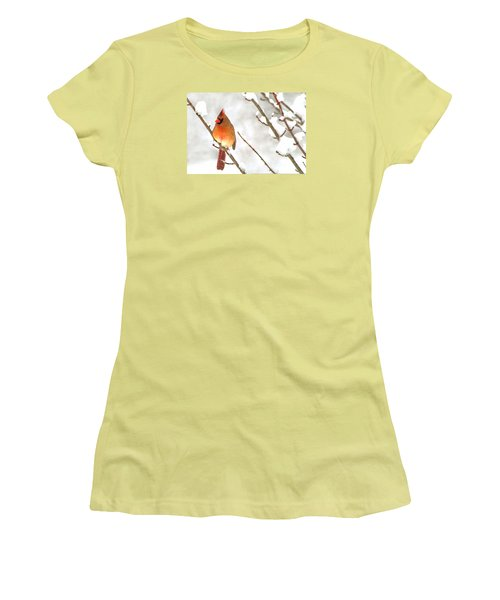Snow Cardinal Women's T-Shirt (Athletic Fit)