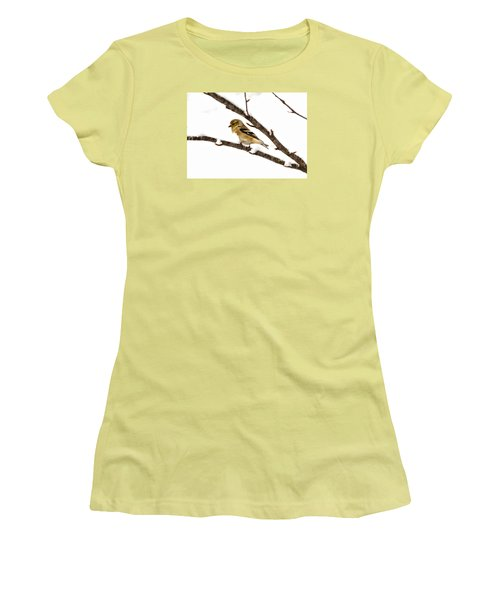 Snowy Day Goldfinch Women's T-Shirt (Athletic Fit)
