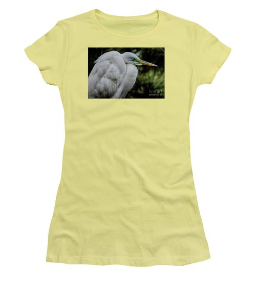 Snowy Egrets Women's T-Shirt (Athletic Fit)