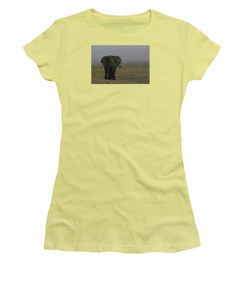 Women's T-Shirt (Junior Cut) featuring the photograph Solitary Bull Elephant by Gary Hall