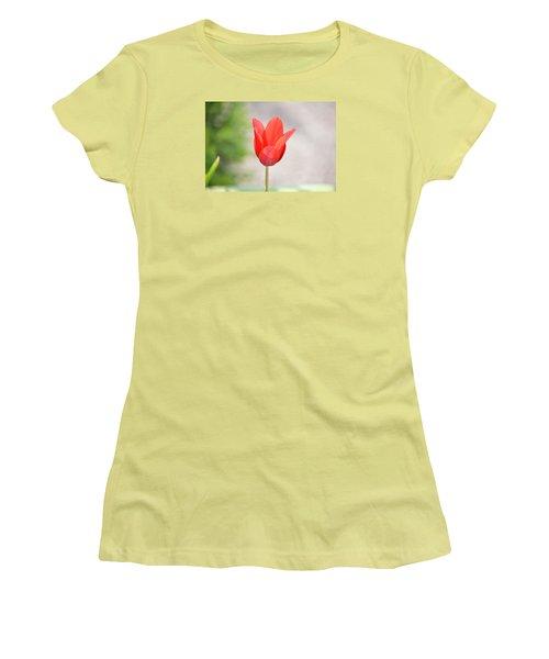 Solo Tulip Women's T-Shirt (Junior Cut) by William Bartholomew