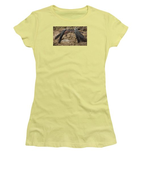 Spring Feathers Women's T-Shirt (Junior Cut) by Randy Bodkins