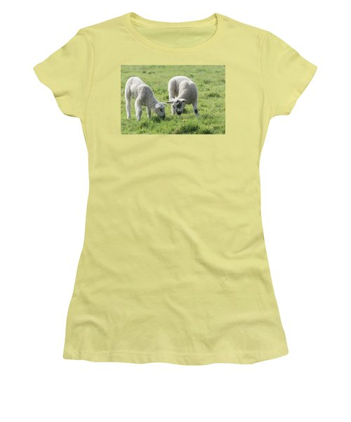 Women's T-Shirt (Junior Cut) featuring the photograph Spring Lambs by Scott Carruthers