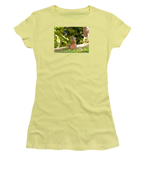 Squirrel On A Log Women's T-Shirt (Athletic Fit)