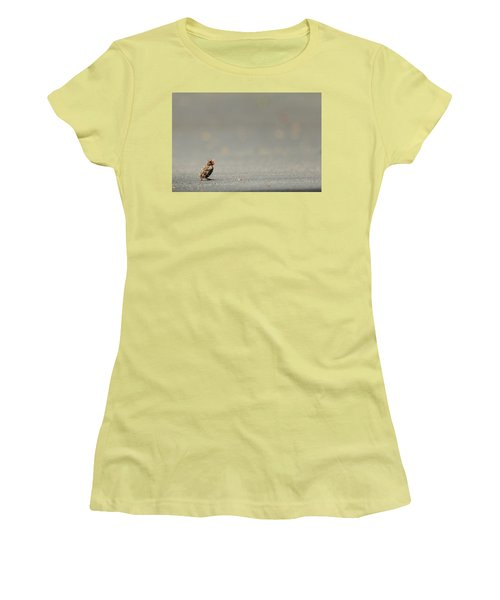 Story Of The Baby Chipping Sparrow 3 Of 10 Women's T-Shirt (Junior Cut) by Joni Eskridge