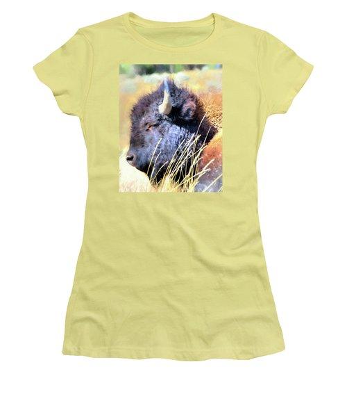 Summer Dozing - Buffalo Women's T-Shirt (Junior Cut) by Greg Sigrist