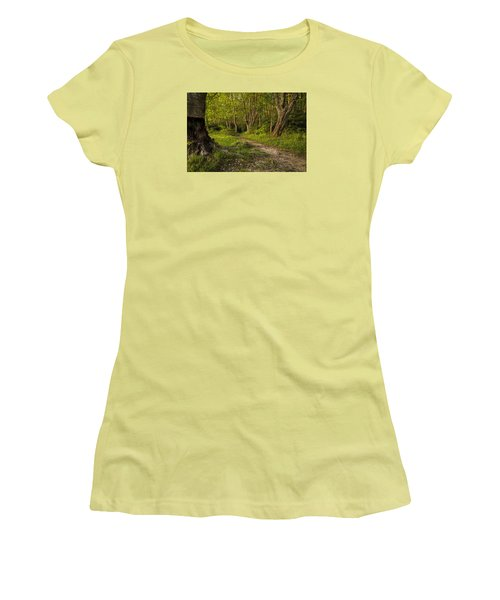 Price Lake Trail - Blue Ridge Parkway Women's T-Shirt (Athletic Fit)