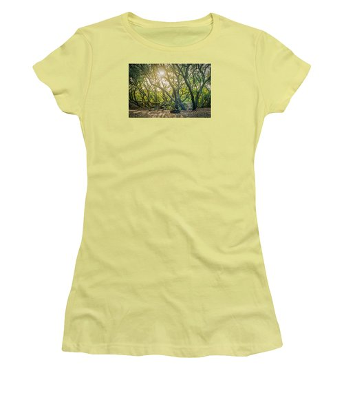Sunset Thru The Trees Women's T-Shirt (Junior Cut) by Scott Meyer