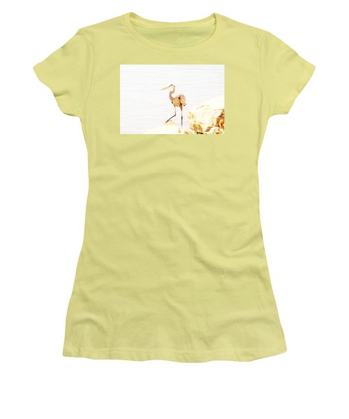 Surveying  Women's T-Shirt (Athletic Fit)