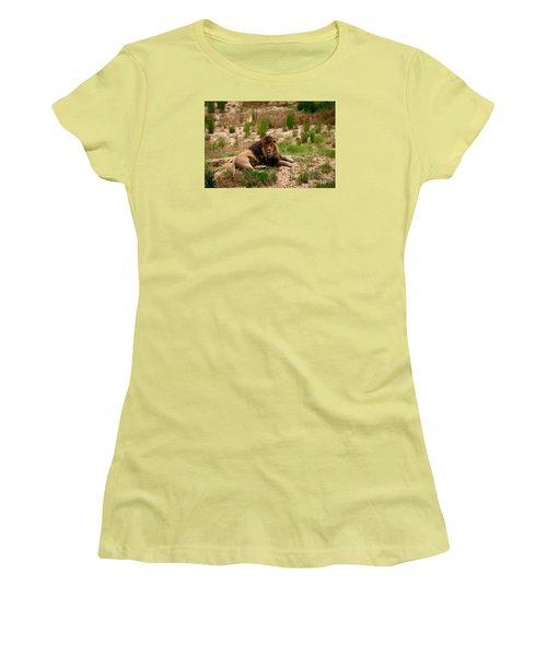 Survivor Women's T-Shirt (Junior Cut) by Sandy Molinaro