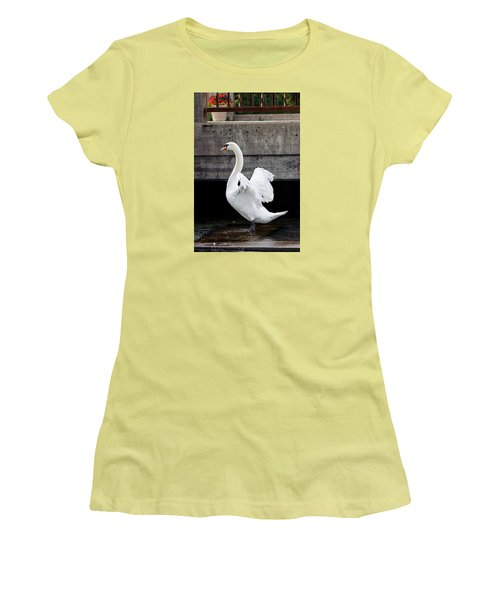Swan At The Bridge Women's T-Shirt (Athletic Fit)