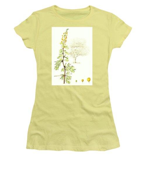 Women's T-Shirt (Junior Cut) featuring the painting Sweet Thorn Botanical Illustration by Heidi Kriel