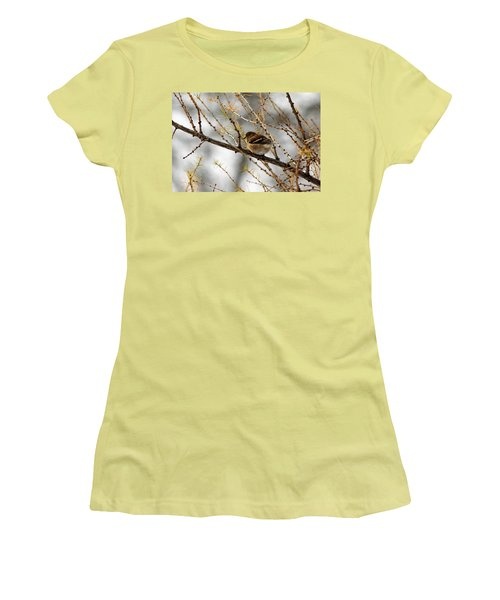 Tamarack Visitor Women's T-Shirt (Athletic Fit)