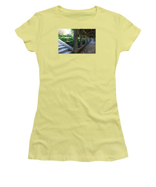 The Grape Arbor Path Women's T-Shirt (Junior Cut) by David Blank
