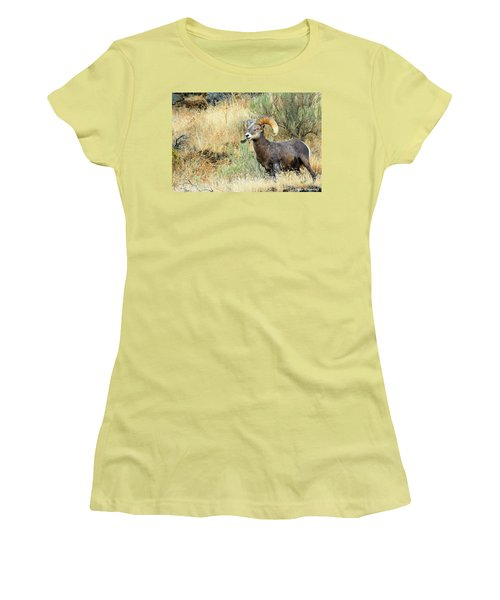 The Loner II Women's T-Shirt (Athletic Fit)