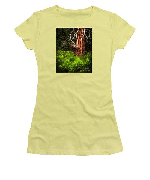 The Old Tree Women's T-Shirt (Athletic Fit)