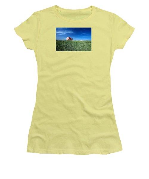 The Pink Church Women's T-Shirt (Junior Cut) by Todd Klassy