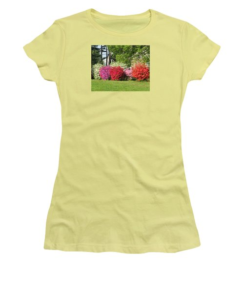 This Is Spring In Pa Women's T-Shirt (Junior Cut) by Jeanette Oberholtzer