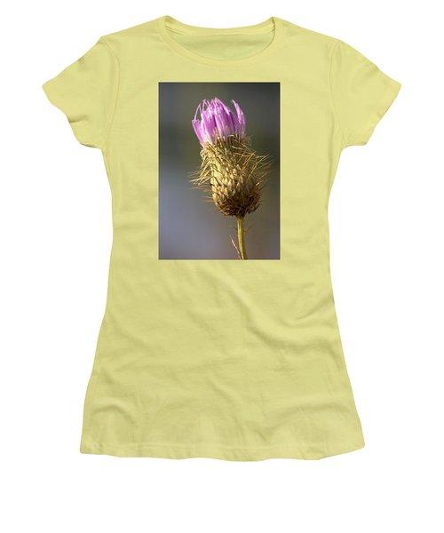 Thistle Women's T-Shirt (Junior Cut) by Joseph Skompski