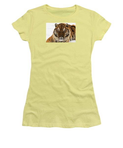 Tiger Stare Women's T-Shirt (Athletic Fit)