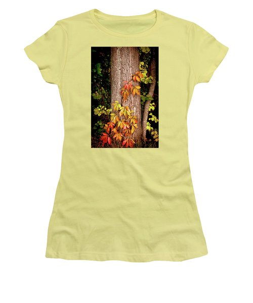 Tree Adornment Women's T-Shirt (Athletic Fit)