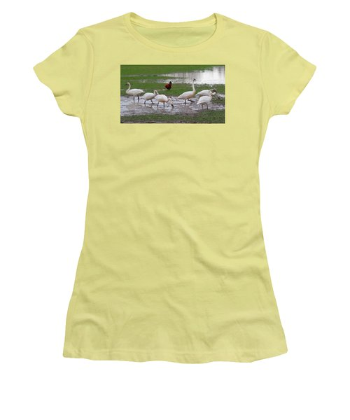 Trumpeter Swans And Rooster Women's T-Shirt (Junior Cut) by Karen Molenaar Terrell