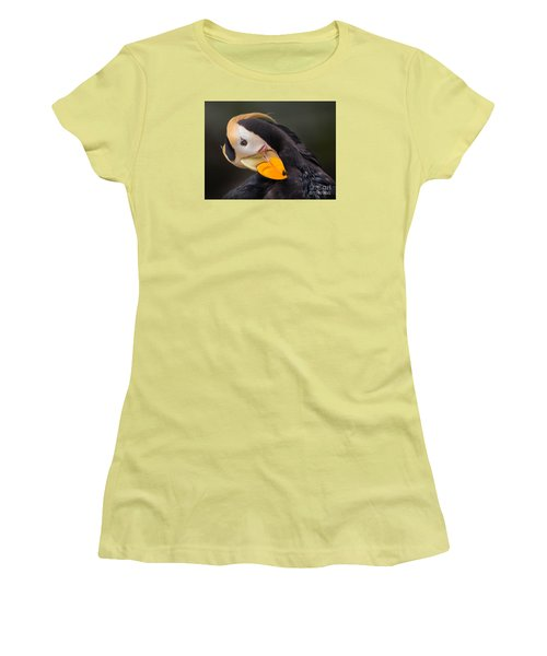 Tufted Puffin Preening Women's T-Shirt (Athletic Fit)