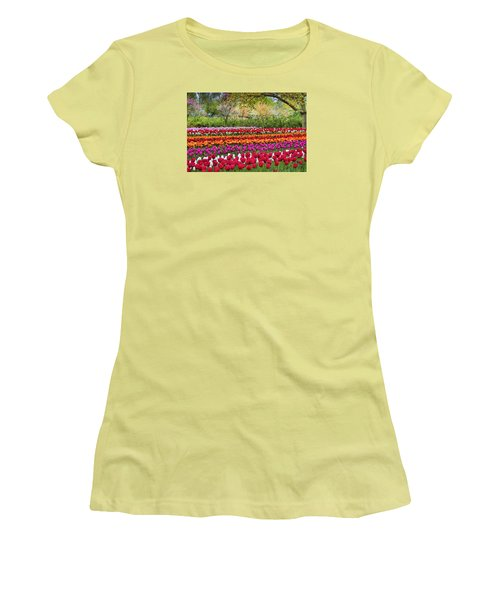 Tulip Mania Women's T-Shirt (Athletic Fit)