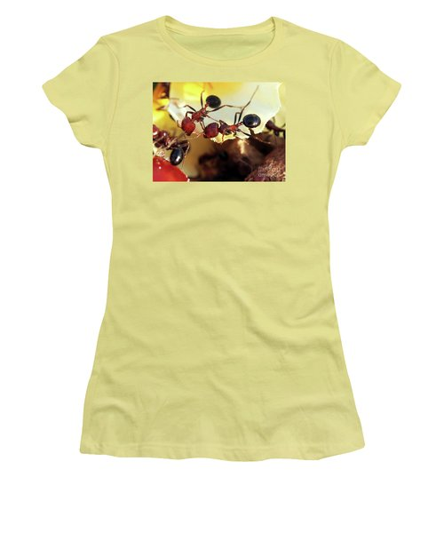 Two Ants In Sunny Day Women's T-Shirt (Athletic Fit)