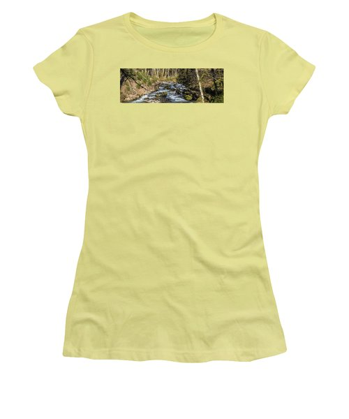 Views Of A Stream, II Women's T-Shirt (Junior Cut) by Chuck Flewelling