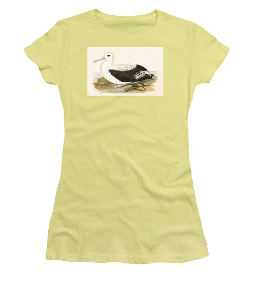Wandering Albatross Women's T-Shirt (Athletic Fit)