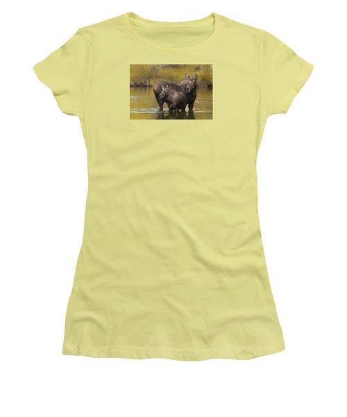 Watchful Moose Women's T-Shirt (Junior Cut) by Gary Lengyel