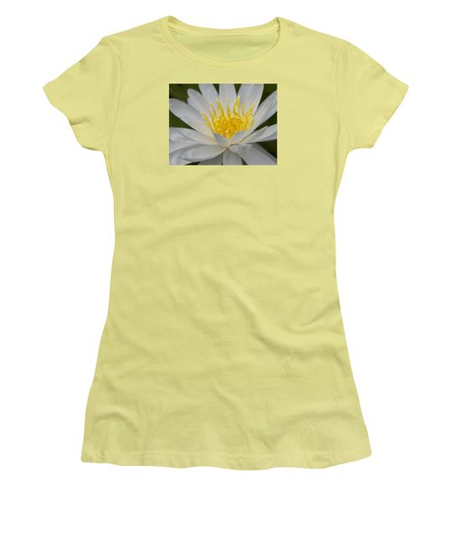 Water Lily Women's T-Shirt (Junior Cut)