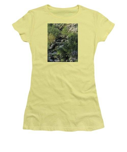Women's T-Shirt (Junior Cut) featuring the photograph Water Logged by Nancy Marie Ricketts
