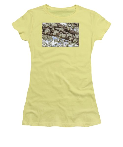 Women's T-Shirt (Junior Cut) featuring the photograph White Crabapple Blossoms by Sue Smith