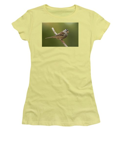 Women's T-Shirt (Junior Cut) featuring the photograph White-crowned Sparrow by Doug Herr