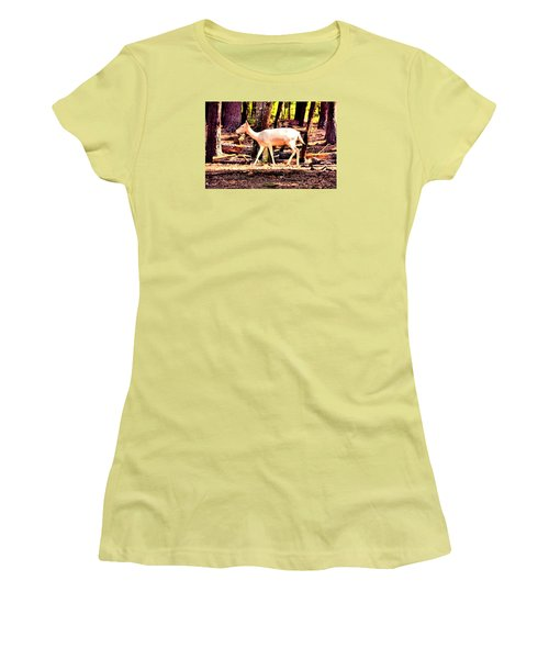 White Deer And Forest Stroll Women's T-Shirt (Junior Cut) by James Potts