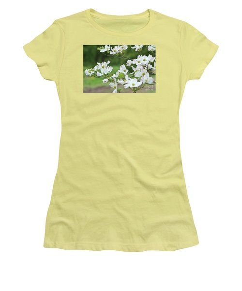 White Flowering Dogwood Women's T-Shirt (Junior Cut) by Ann Murphy