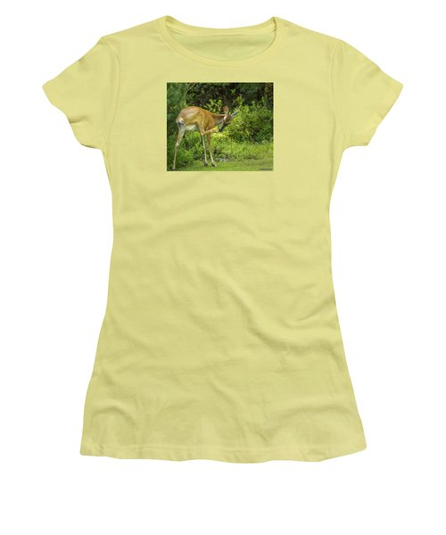 White Tailed Deer Scratching It's Nose Women's T-Shirt (Athletic Fit)